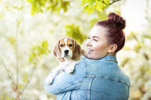 Beagle Welpe, Rudelfotografie, Mensch-Hund-Fotografie - Hundefotografie und Tierfotografie in Potsdam und Berlin- Sophia Zoike Photography