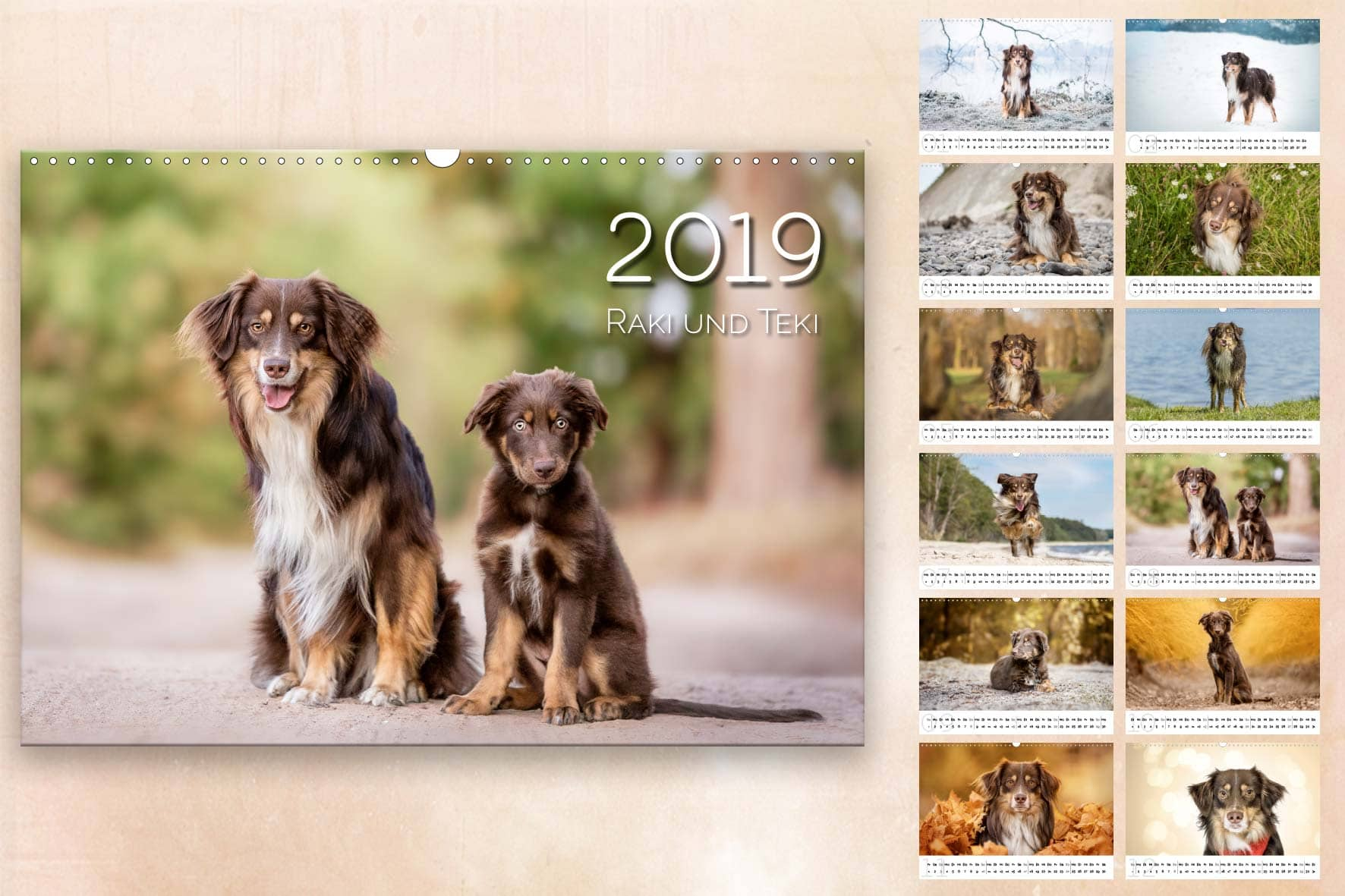 hochwertiger Wandkalender von Sophia Zoike Photography, Hundefotografie in Potsdam, Berlin und Brandenburg, Tierfotografie, Pferdefotografie